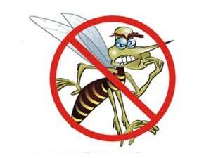 dengue002